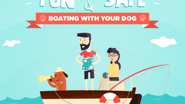 dog-boating-safety