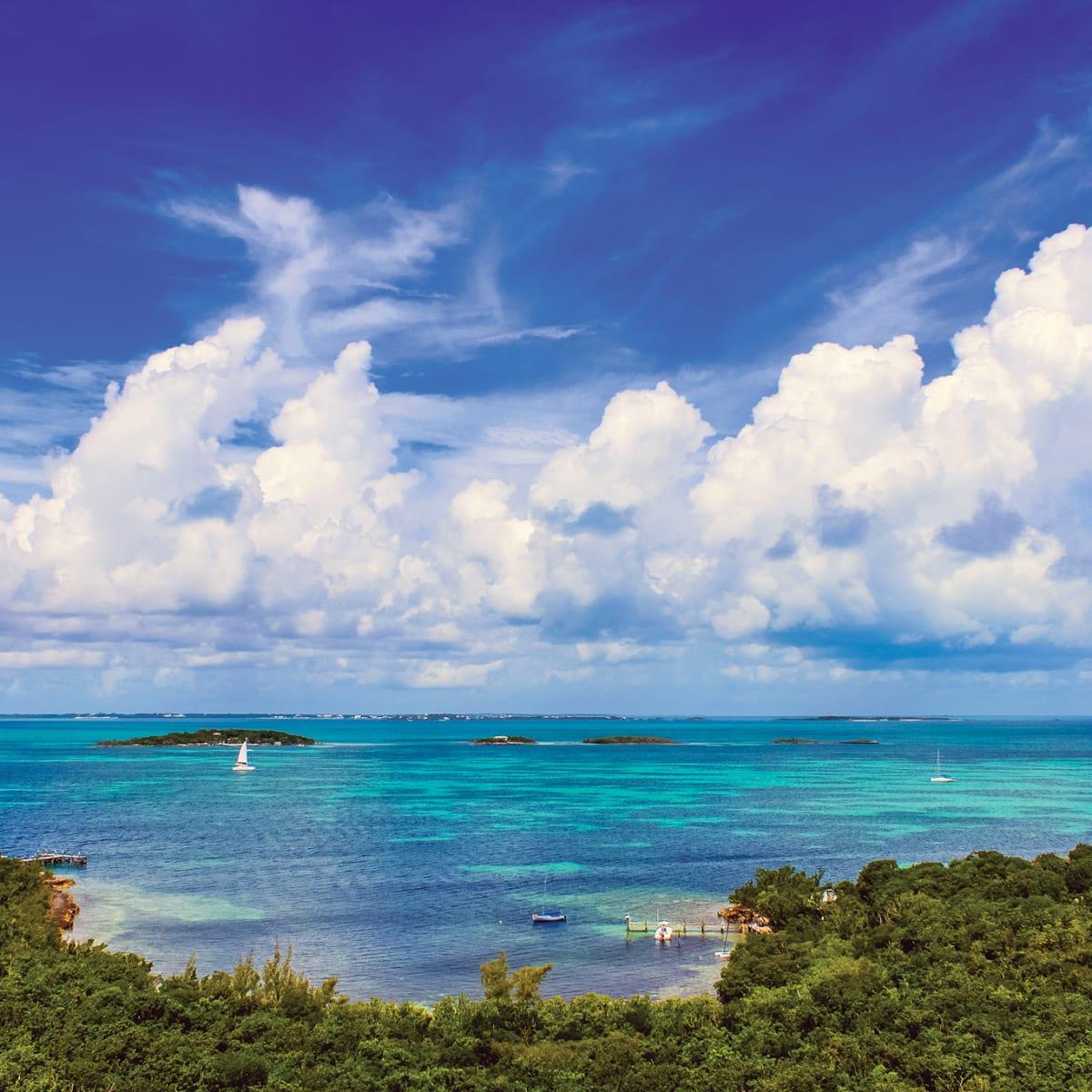 btc bahamos katalogas