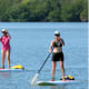 The crew embarks on a paddleboard adventure in search of dolphins, manatees and alligators