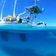 Delos-Over-Under-Diving-