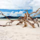 Driftwood-from-cyclone-Debbie-at-Betty's-Beach-next-to-Hill-Inlet