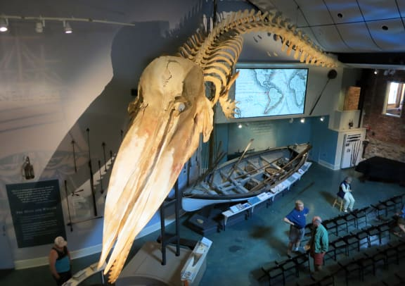 Preparing-for-a-lecture-in-the-Nantucket-Whaling-Museum