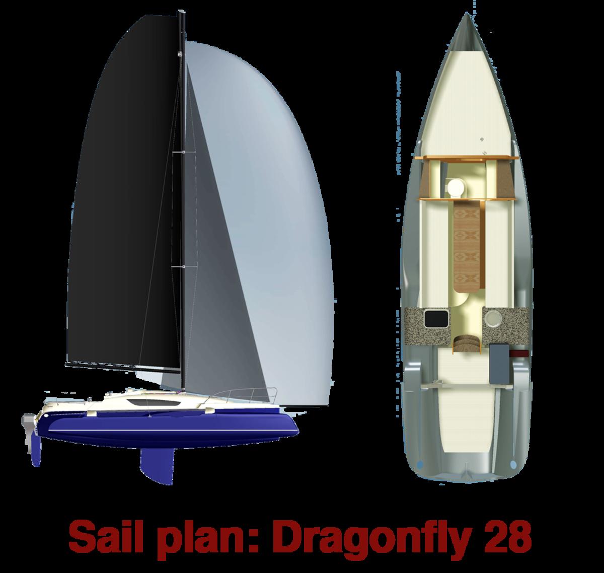 sailplandragonfly28