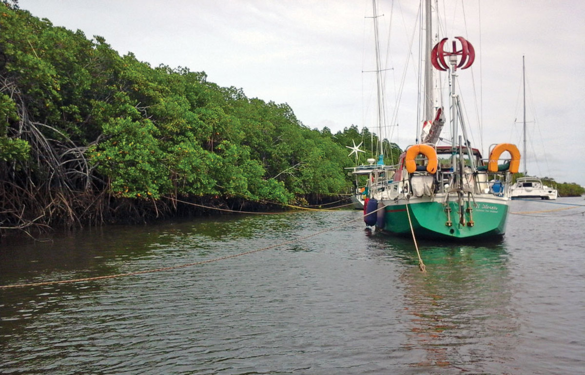 Cruisers head for the mangroves to ride out the cyclone