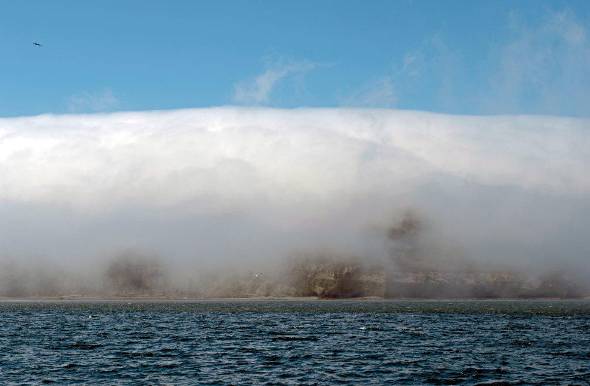 Steam fog