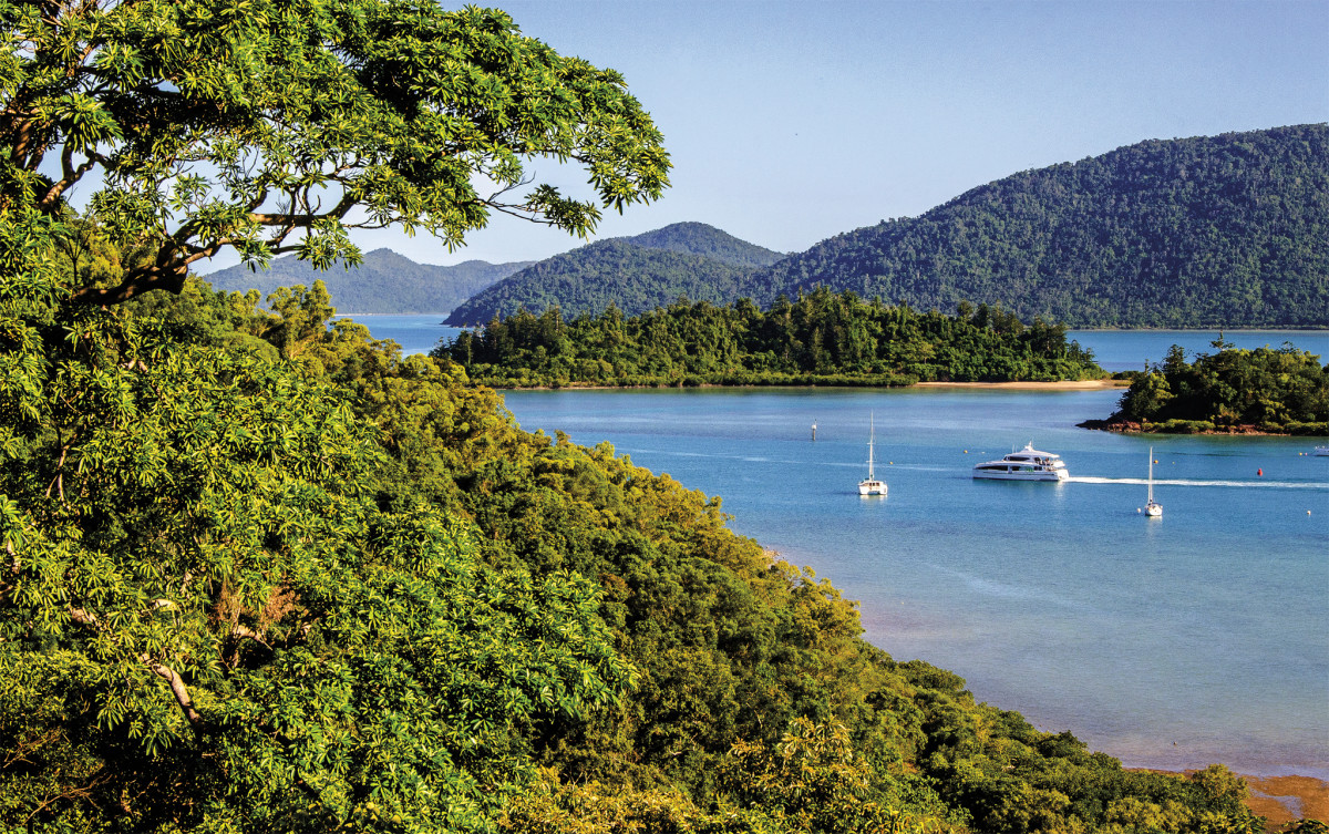 In addition to the idyllic cruising, thick forests on shore are another tropical draw to the Whitsundays