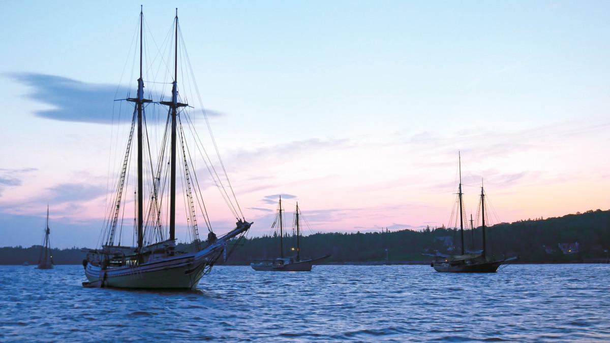 The fleet creates an impressive silhouette against the sunrise over Islesborough