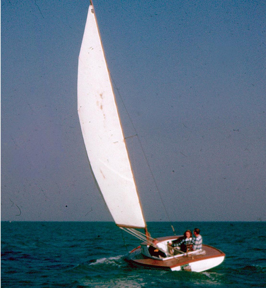 Owl under full sail on the Salt River