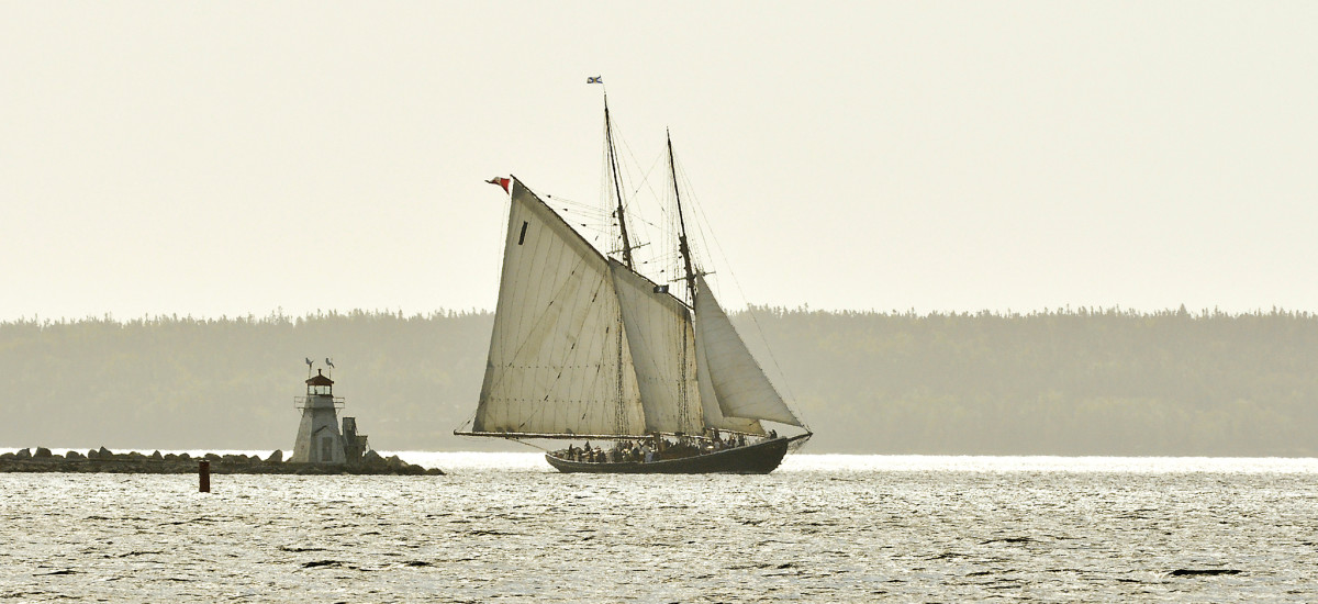 Bluenose returns to harbor from a daysail